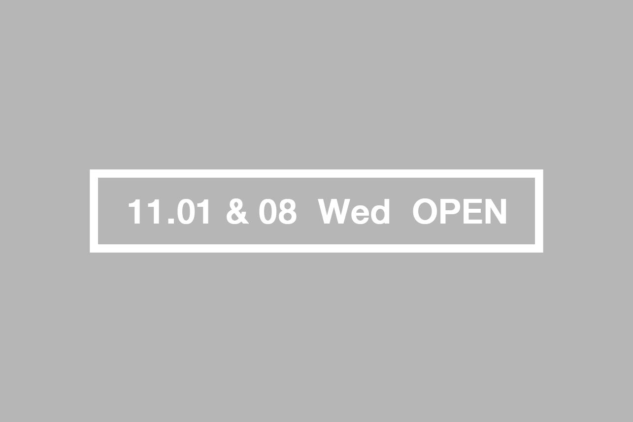 blog_110108_open_tpr